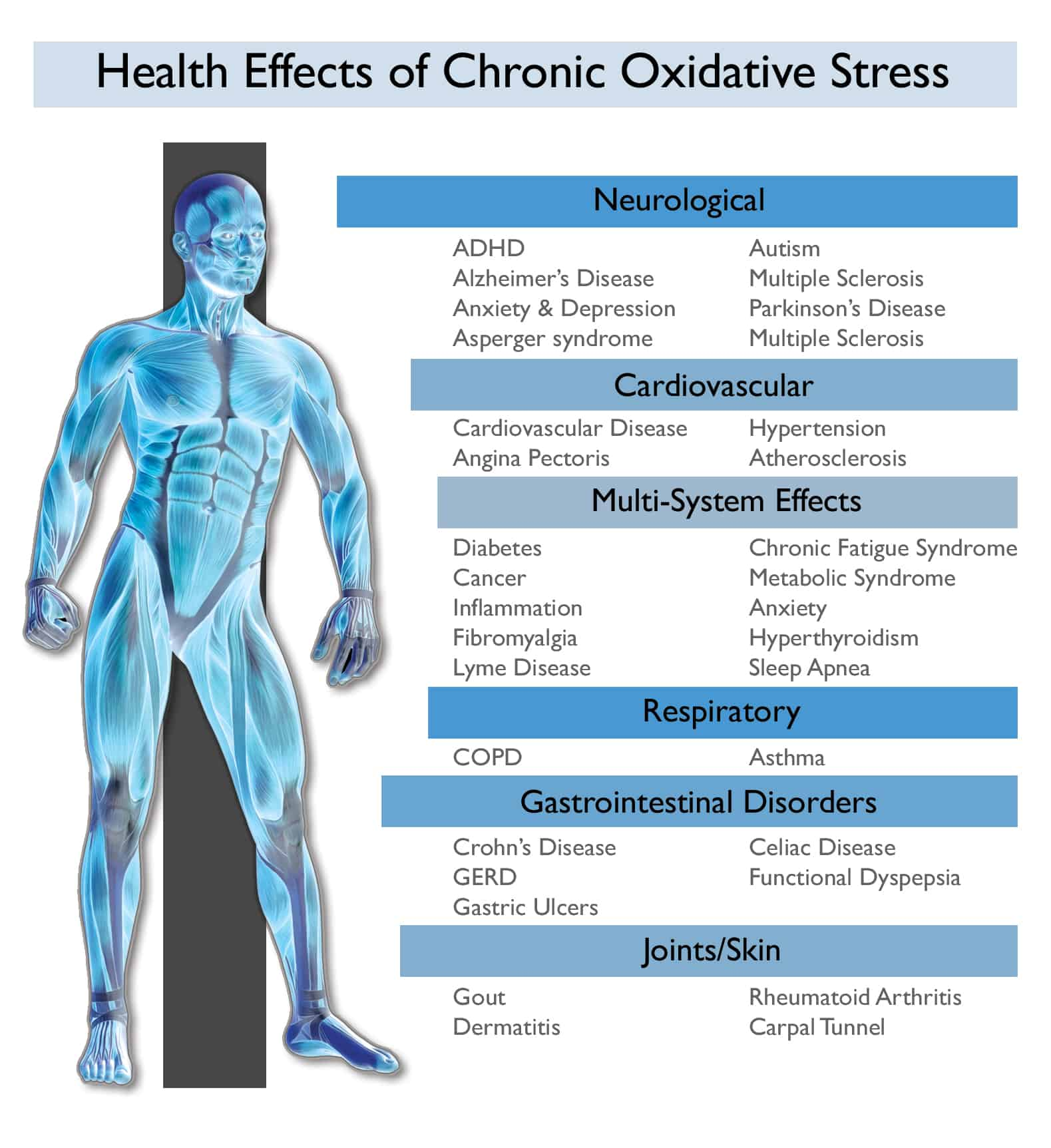 chronic-oxidative-stress-and-the-body (1)